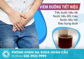 Viêm đường tiết niệu Biểu hiện nguyên nhân và điều trị