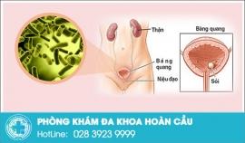 Nhận biết dấu hiệu bệnh viêm bàng quang ở nam giới