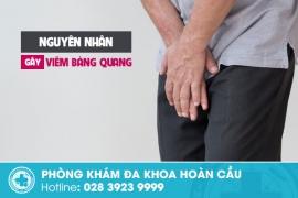 Nguyên nhân gây viêm bàng quang nam giới cần cảnh giác